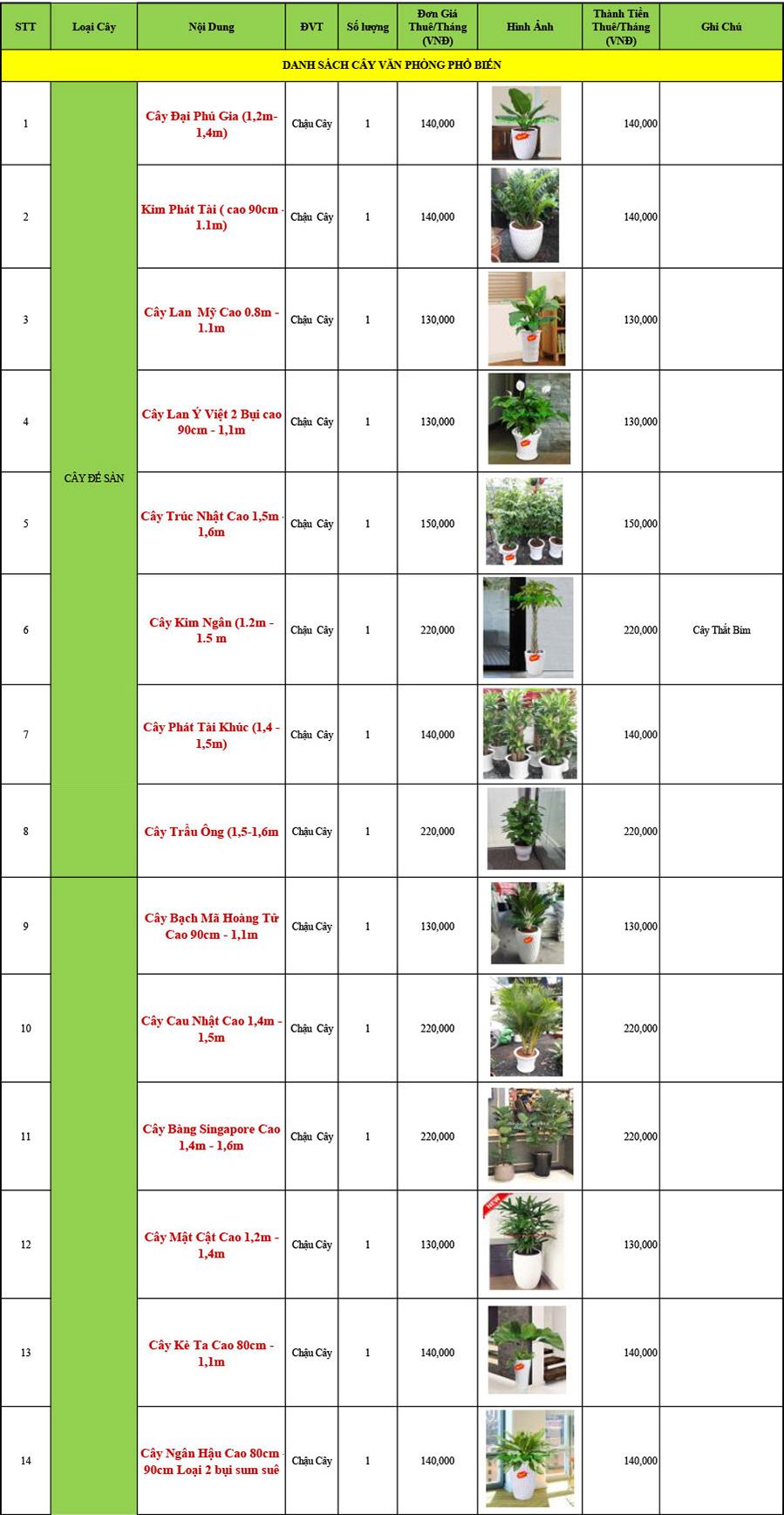 Bảng giá cho thuê cây cảnh