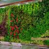 cách bảo quản tường cây giả
