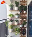 11Mẩu trang trí ban công xanh chung cư, căn hộ đẹp MS BC003