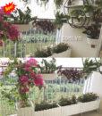 15Mẩu thi công tiểu cảnh ban công đẹp cho chung cư MS BC007
