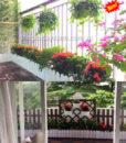 29Mẩu trang trí ban công chung cư bằng hoa và cây xanh MS BC555