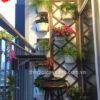 43Mẩu tiểu cảnh ban công đẹp cho căn hộ chung cư MS BC004