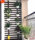 47Mẩu tiểu cảnh ban công xanh cho căn hộ MS BC002
