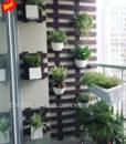 48Mẩu tiểu cảnh ban công xanh cho căn hộ MS BC002